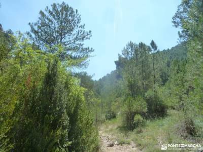 Hoz del Río Escabas-Serranía de Cuenca;berrea en cazorla viajes puente de octubre el paseo el esco